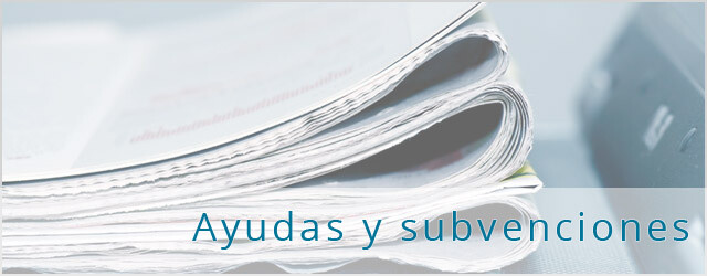 Subvenciones catalunya